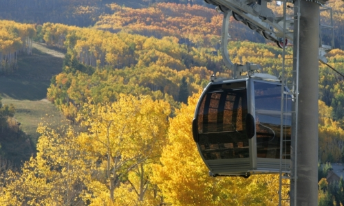 Vail Gondola Fall bike Trails